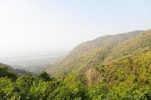 Berge und Wälder foto