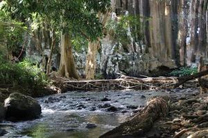 Fluss mit Brücke foto