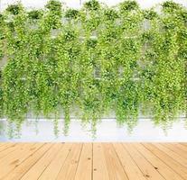 vertikale grüne Wand mit Holztisch