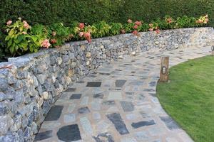 Steinmauer und Blumen foto