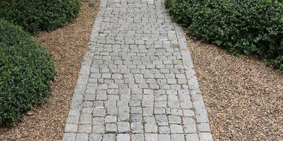 Backsteinweg im Garten foto