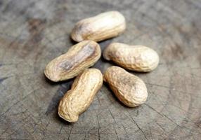 Erdnüsse in Muscheln