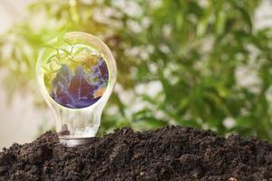 Erde in Glühbirne wächst aus dem Boden