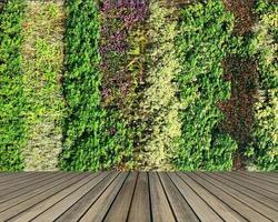 grüne Wand und Holztisch