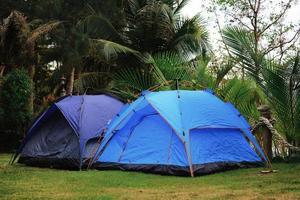 Nahaufnahme von Zelten, die auf einem grünen Hof kampieren