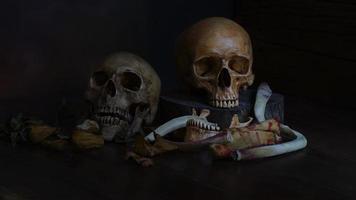 zwei menschliche Schädel auf schwarzem Grund foto