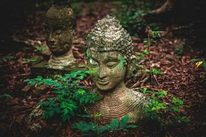 alte Statue von Buddha auf dem Boden mit Blättern am Umong-Tempel, Chiangmai, Thailand foto