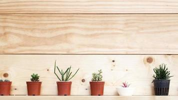 Retro Wohnkultur und Blumen und auf einem Wandregal