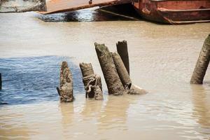 loggt sich in den Fluss ein foto