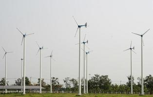 Bereich der Windkraftanlagen