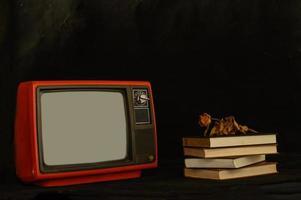 altes Retro-TV-Stillleben mit getrockneten Blumen und Büchern