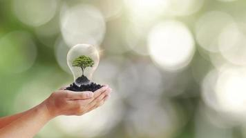Pflanzen von Bäumen in klaren Flaschen, um Geld auf einem Holztisch und verschwommenen grünen Hintergrundgeschäftswachstumsideen zu sparen foto