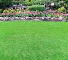 Blumengarten mit grünem Gras foto