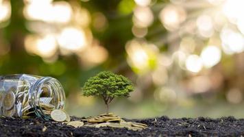 Bäume, die auf dem Boden und aus den Gläsern des Geldes wachsen. Finanzideen und wirtschaftliche Investitionen foto