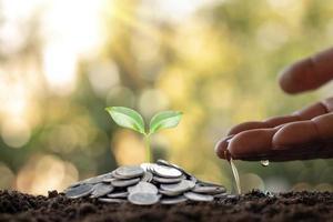 Die Hände des Geschäftsmannes gießen die auf dem Boden wachsenden Pflanzen, Münzen und natürliches Licht mit finanziellen Wachstumsideen foto