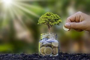 Pflanzen wachsen aus Geldflaschen auf dem Boden und Händen, die Münzen an Pflanzen, Anlageideen und Geschäftserfolg verschenken foto