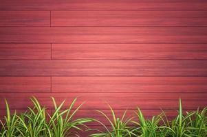 Holz Textur Hintergrund mit Pflanzen foto
