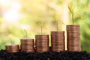Geldmünzenstapel, Investitionskonzept