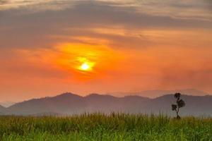 orange Sonnenuntergang über Bergen und einer grünen Wiese