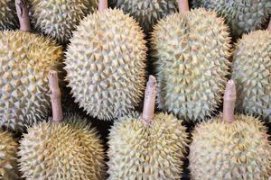 Gruppe von Durianfrüchten