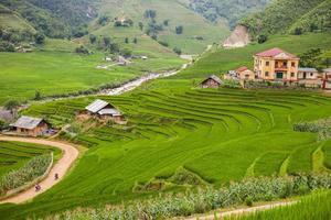 Dorf- und Reisfelder