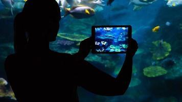 Frau, die ein Foto eines Aquariums mit einer Tablette macht