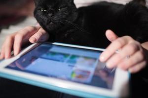 Frau mit einer Tablette mit einer schwarzen Katze auf ihrem Schoß foto