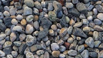 Kieselsteine am Strand foto