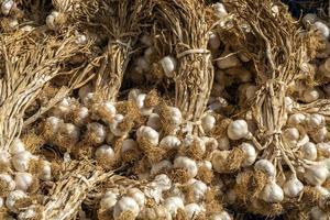 Nahaufnahme von Bio-Knoblauch zum Verkauf auf dem Bauernmarkt in Istanbul foto