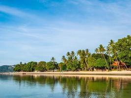 schöner tropischer Strand mit Palmen