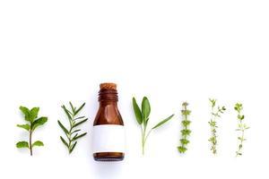 Flasche mit ätherischen Ölen mit Kräutern foto