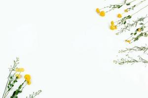 weißer Hintergrund mit hübschem gelbem Blumenrahmen foto