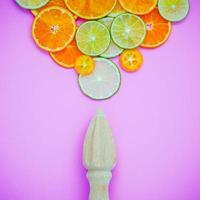 geschnittene Zitrusfrüchte und eine Saftpresse