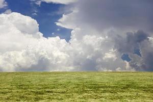 Blick auf grünes Gras und blauen bewölkten Himmel