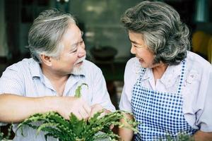älteres Ehepaar, das zusammen spricht und Bäume in Töpfe pflanzt