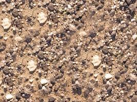 trockener Boden für Hintergrund oder Textur foto