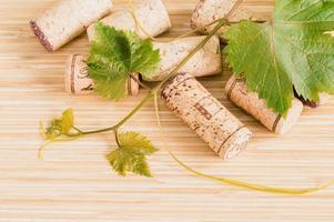 Weinkorken und Efeu foto