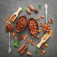 Kakaobohnen und Kakaopulver in Schalen foto
