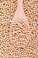 Sojabohnen in einem Löffel foto