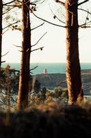 ein entspannender Blick auf einen Leuchtturm aus dem Wald während eines Frühlingstages foto