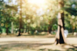 verschwommenes Naturbokeh des grünen Parks foto