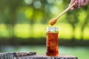 Honig tropft von Honigschöpflöffel auf natürlichem grünem Hintergrund foto