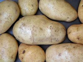 Kartoffeln auf einem dunklen Hintergrund foto