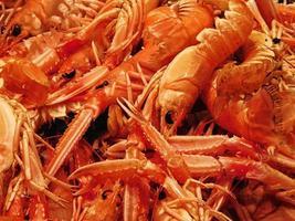Haufen Garnelen und Krabben