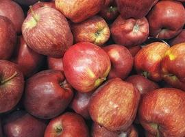 Haufen roter Äpfel foto