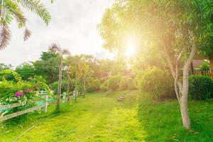 schöner grüner Garten foto
