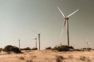 Windkraftanlagen in ländlicher Umgebung