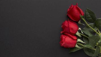rote Rosen auf einem schwarzen Hintergrund foto