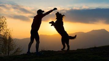 großer Hund auf zwei Pfoten, um einen Keks von einem Mann, Silhouette mit Hintergrund bei buntem Sonnenuntergang zu nehmen foto