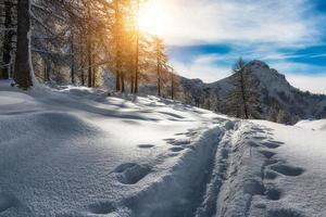 Track Skifahrer Bergsteiger foto